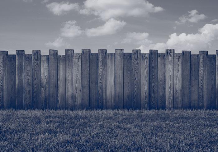Property & Boundary Disputes